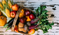 Fall healthy cooking background. Ingredients for Thanksgiving day dinner. Corn, carrot, pumpkin, fruits in vintage basket over wooden table, top view.