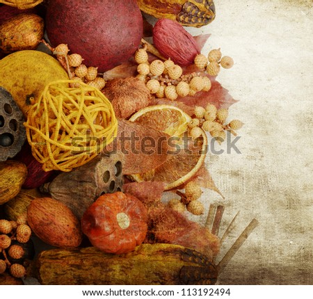 Fall Items :Fruits ,Seeds And Nuts On Grunge Background
