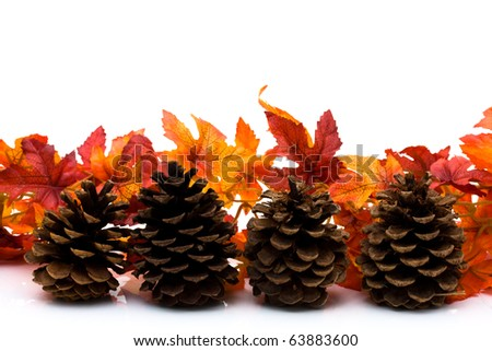 Fall leaves and pinecone isolated on a white background, fall border