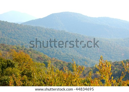 fall leaves beginning to change at the start of autumn with blue mountains behind