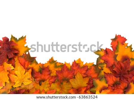 Fall leaves isolated on a white background, fall border