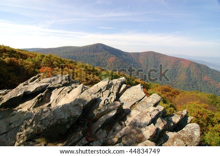fall leaves on rolling hills in autumn
