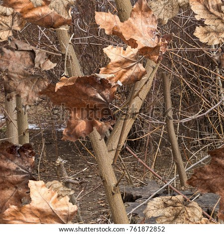 Fall leaves on the bush. Ideal for hunting and military purposes. Realistic camouflage seamless pattern.