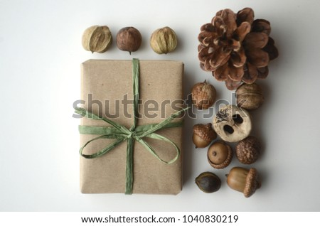 Fall mood. Acorns, tree nuts, and seeds with a pine cone and a gift-wrapped box in brown paper and raffia with copy space. Conceptual styled image.