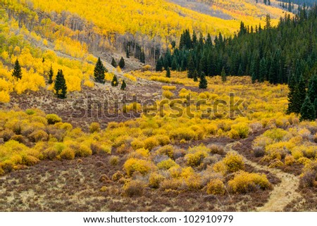 Fall mountain landscape in the Colorado Rockies - stock photo