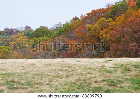 fall mountain over the hill