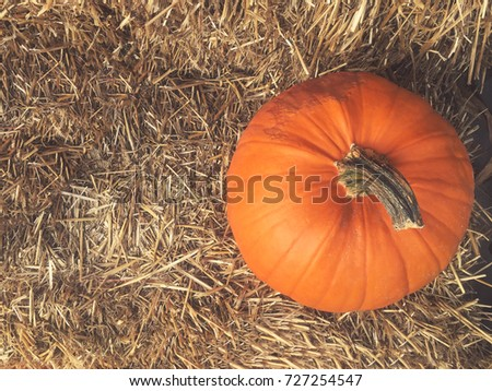 Fall Pumpkin With Hay Background Shot From Directly Above