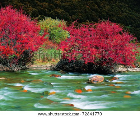fall river,view in Tibet - stock photo