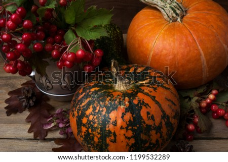 Fall rustic abundance cornucopia decor with red viburnum berry in the antique silver kettle, pine cones, oak leaves and two orange pumpkins