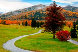 Fall scenery of a pathway winding through green grassy meadows in Hoshino Resort Tomamu, in Shimukappu Village, Hokkaido, Japan, with colorful foliage on the hillside on a beautiful autumn morning