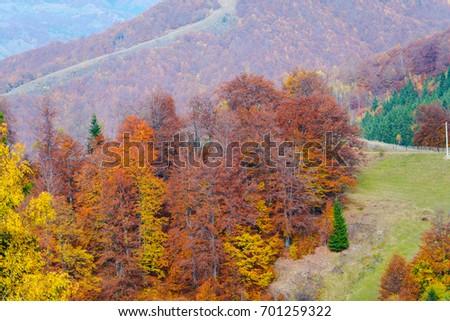 Fall Season - Shutterstock ID 701259322