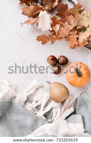 Fall season flatlay in pastel colors for fashion and beauty, lifestyle bloggers, announcements, ads. Wool scarf with fringe, dry leaves, acorns, little pumpkin, pear. Copy space  #723203629