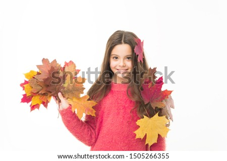 Fall season. Kid with fallen leaves white background. Happy small girl maple leaves. Autumn pleasures. Cozy days. Childhood happiness. Collecting autumn leaves. Nature changing color. Seasons concept.