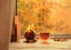 fall season. tea cup, candlestick, acorns, boooks on windowsill. home tea party. autumn cozy concept. melancholic mood, inspiration image