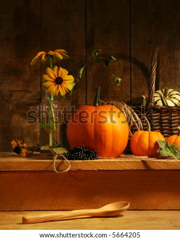 Fall still life with flowers and gourds