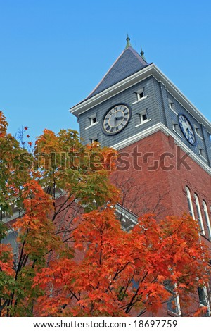 Fall trees at Plymouth State University in New Hampshire