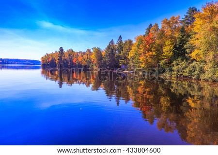 Fall trees with reflection