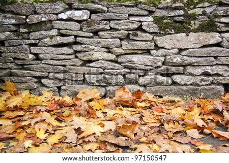 fallen autumn leaves lying on ground next to traditional dry stone wall in bilbury village in the cotswalds england