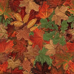 Fallen autumn leaves seamless pattern Yellow Red and Green Autumn Leaves Background.