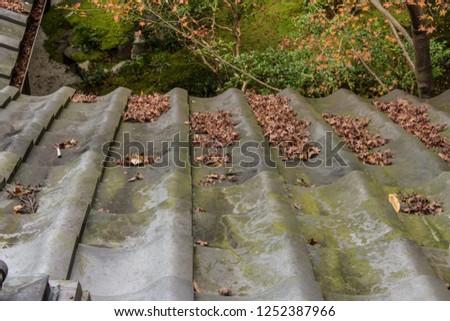 Fallen fallen on the roof #1252387966