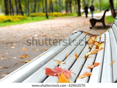 Fallen leaves on the park bench