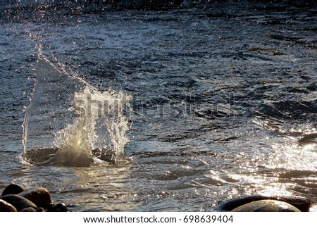 Fallen stone into water #698639404