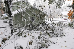 fallen tree branches after snow storm in residential district near house