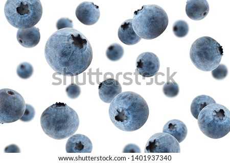Falling blueberry, isolated on white background, selective focus #1401937340