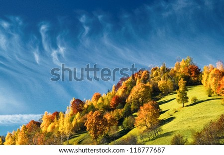 Falling colors under deep blue sky with horse tail clouds