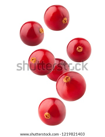 Falling cranberry isolated on white background, clipping path, full depth of field