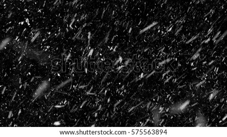 Falling down real snowflakes, heavy snow, snowstorm weather, shot on black background, matte, wide angle, isolated, perfect for digital composition, post-production. #575563894
