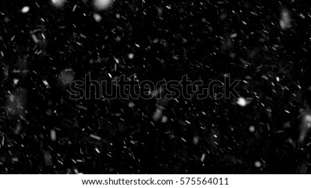 Falling down real snowflakes, heavy snow, snowstorm weather, shot on black background, matte, wide angle, isolated, perfect for digital composition, post-production. #575564011