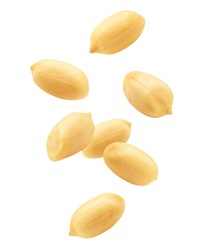 Falling peanut isolated on white background, clipping path, full depth of field