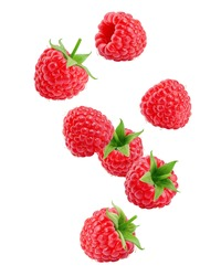 Falling Raspberry isolated on white background, clipping path, full depth of field