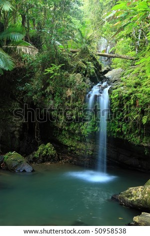 Falls and pool on Cascada Juan Diego in the El Yunque rainforest in the Caribbean National Forest, Puerto Rico