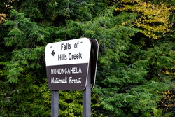 Falls of Hills Creek waterfall direction sign in Monongahela national forest at Allegheny mountains, West Virginia