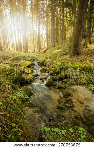 Falls on the small mountain river in a forest in spring with light leak and sun flare