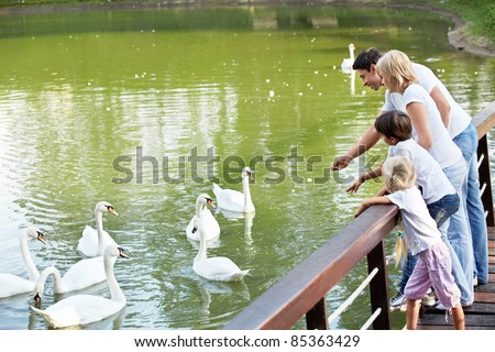 Families with children feeding white swans