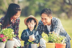 Family child girl helping parent care plant flower in garden. Young people mother, father and daughter gardening outdoor sunny  nature background. Happy and enjoy in spring and summer day