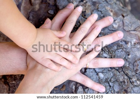 Family concept.Three hands of the family on the tree bark - baby, mother and father. Selective focus on infant handle. Unity, support, protection and happiness. Ready for your logo on the hands - stock photo