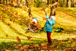 Family fun time at autumn park with kid and pet dog