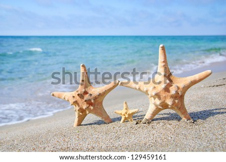 family holiday concept - sea-stars walking on sand beach against waves background