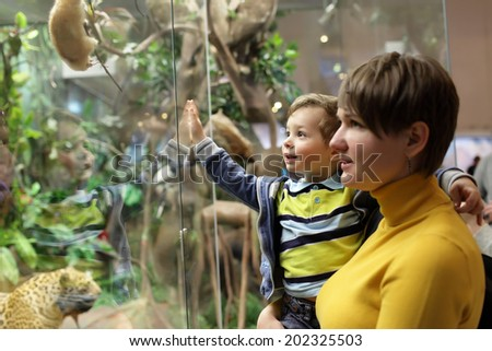 Family looking at wild animals in a museum