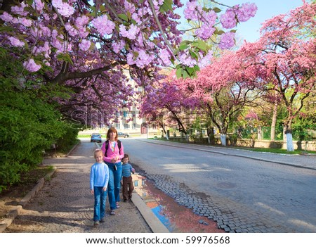 "Family (mother and children) in spring city street with pink ""Japanese flowering cherry"" trees blossom (Uzhgorod City, Ukraine)"