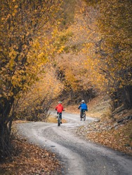 Family mountain biking on forest trail, back view. Cycling outdoors in autumn landscape scenery. Travel destination inspiration in the Pyrenees, Spain.