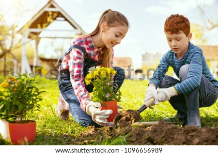 Family occupation. Cute positive girl holding a flower pot while helping her brother to plant them #1096656989