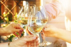 Family of different ages people cheerfully celebrate outdoors with glasses of white wine, proclaim toast