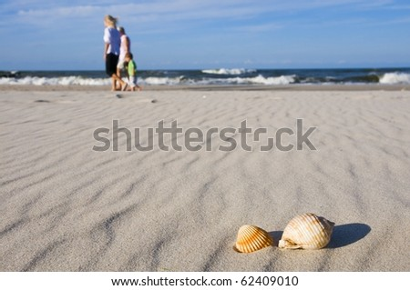 Family on beach with shells