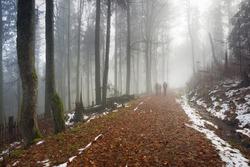 family on walk in autumn mist