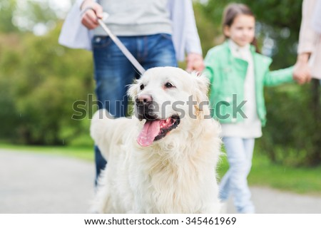 family, pet, domestic animal and people concept - close up of family with labrador retriever dog on walk in park